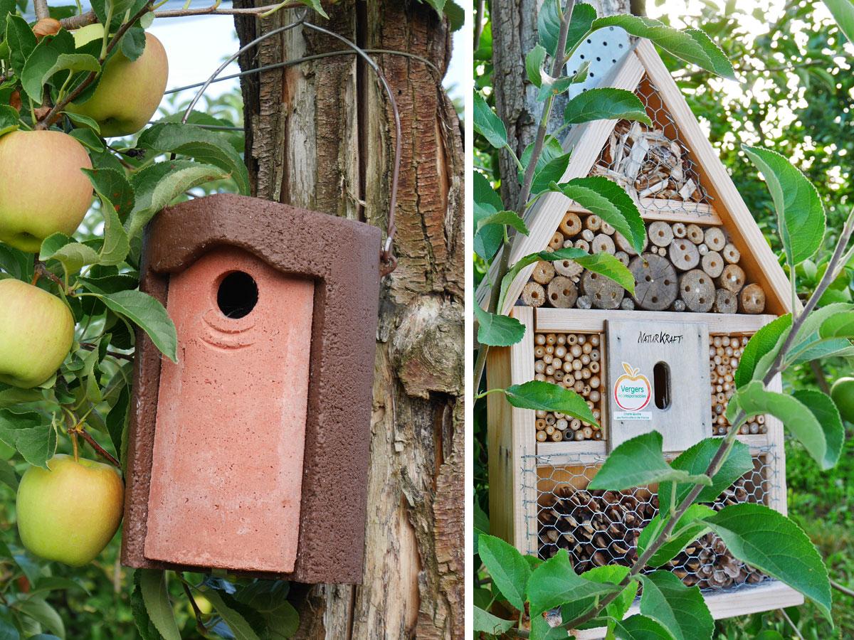 Nichoirs et hôtels d'insectes